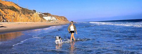 ALLY & HERO BEACH