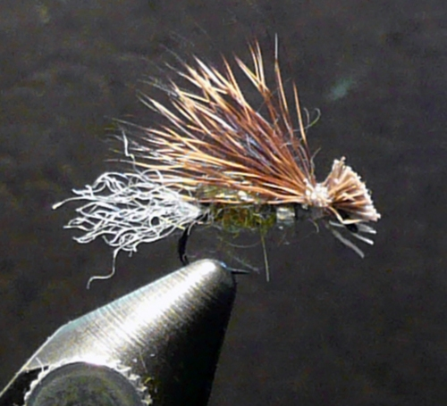 gb-x-caddis-olive2