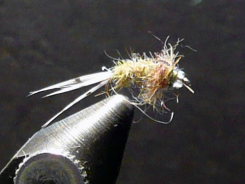 glassbead-hot-creek-bwo-nymph