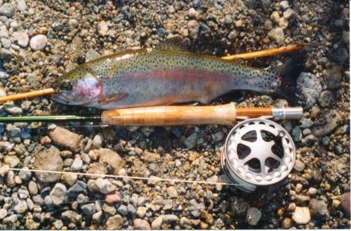 rainbow-owens-2007