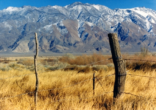 owens-valley-open-range-tb
