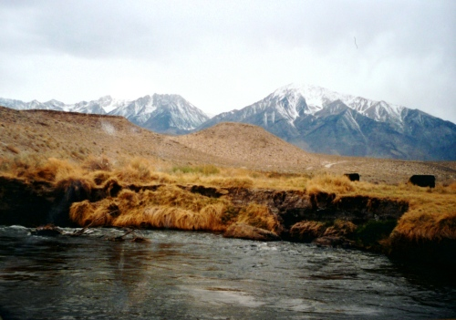 Owens Valley | PlanetTrout