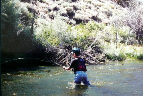 Fly fishing in bridgeport ca planettrout for Walker river fishing