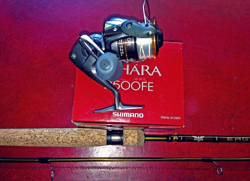 SPINNING ROD & REEL
