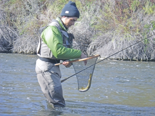 Fly fishing the east walker river planettrout for Walker river fishing