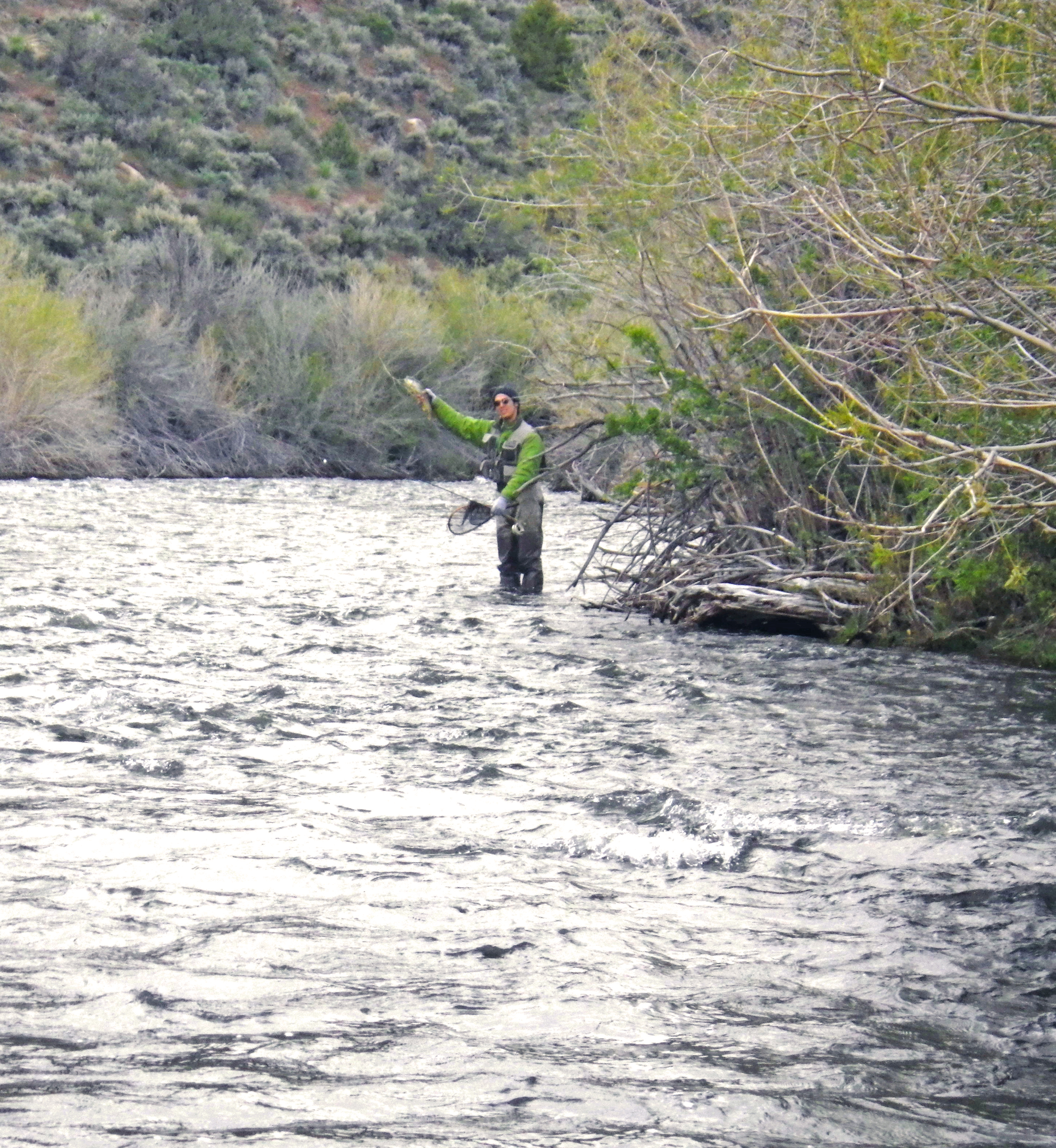 Mike s east walker river blackie and red planettrout for Walker river fishing