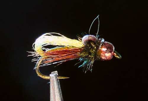 GLO BUBBLE CADDIS PUPA VAR MM -1-