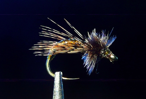 GRAPHIC CADDIS JB 2499 -1-