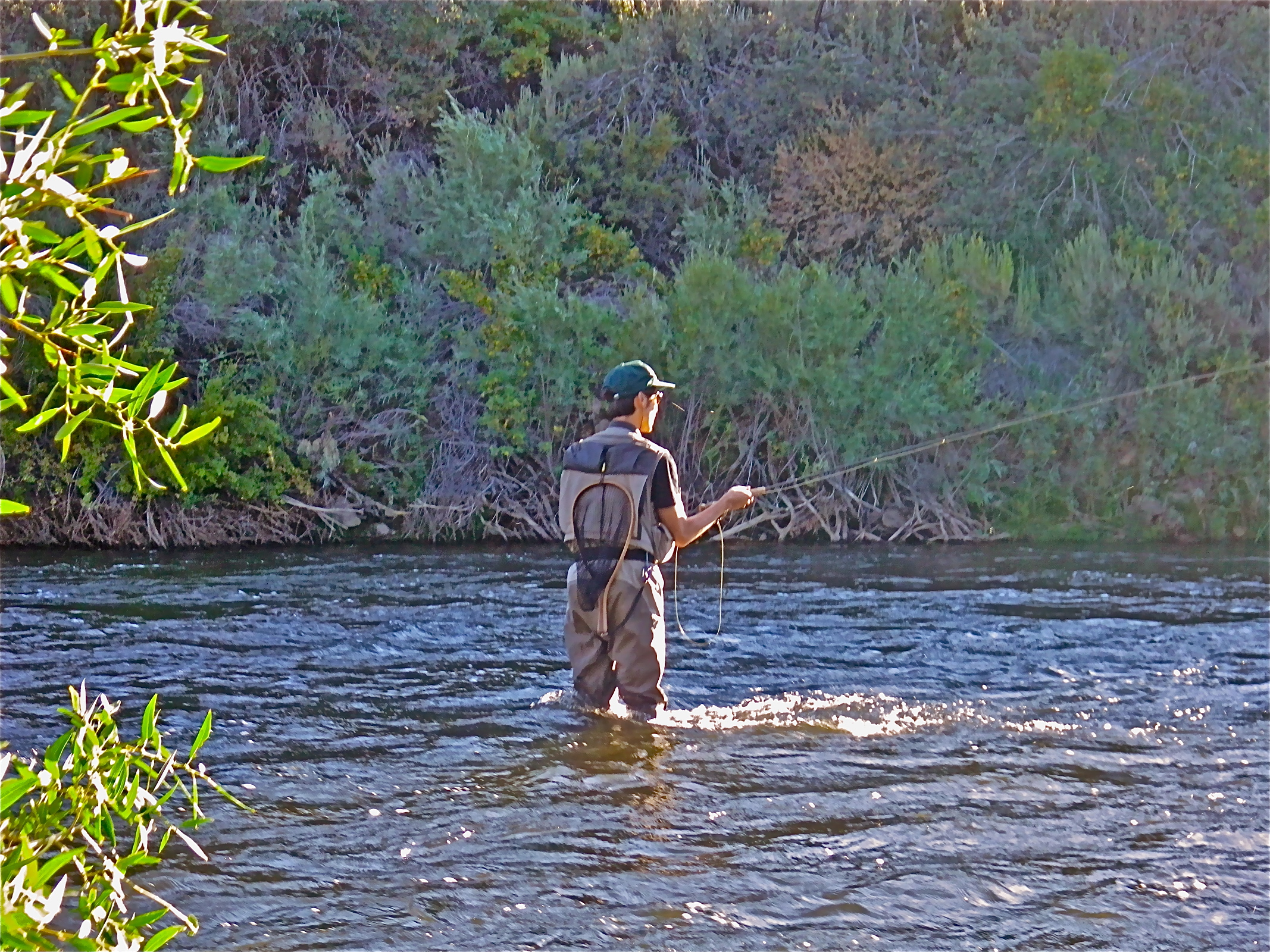 East walker river fly fishing planettrout for Walker river fishing