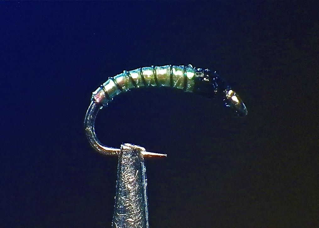 Silver Bead Head iradesant FLASH BACK Orange Caddis Larva Set de 12