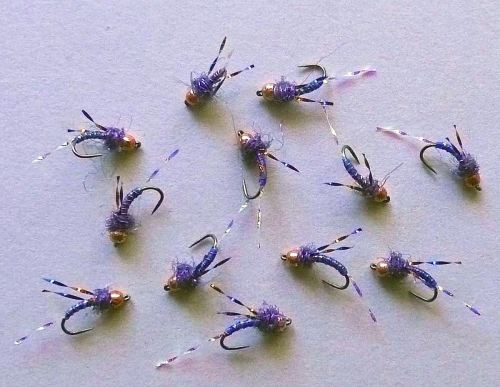 DNA CB BLUE MIDGES