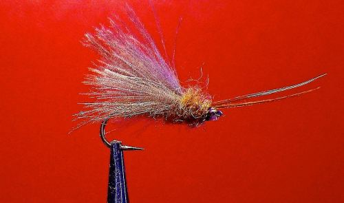 LITTLE CADDIS THING