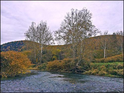 CHANNEL DEL RIVER MOO