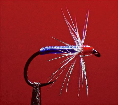 BLUE R.A.M. CADDIS