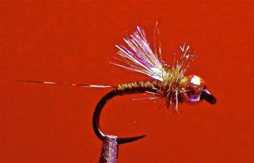 ICE WINGED OLIVE QUILL EMERGER 2