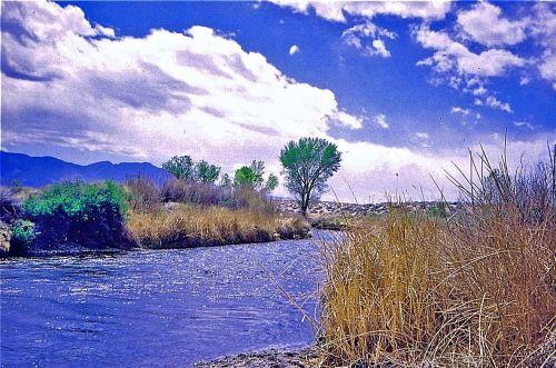 owens-river_