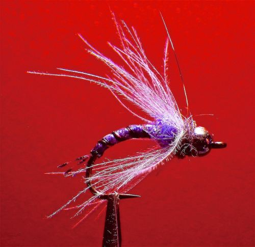 REUNION CADDIS