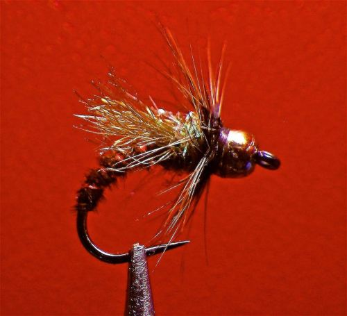 S CADDIS PUPA Brown