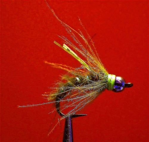 SEALED DEAL CADDIS PUPAE OLIVE