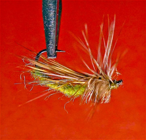 DANCING CADDIS BRACHY 2
