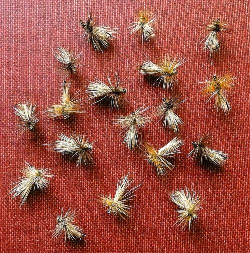 DANCING CADDIS UV2 TAN GRP 1