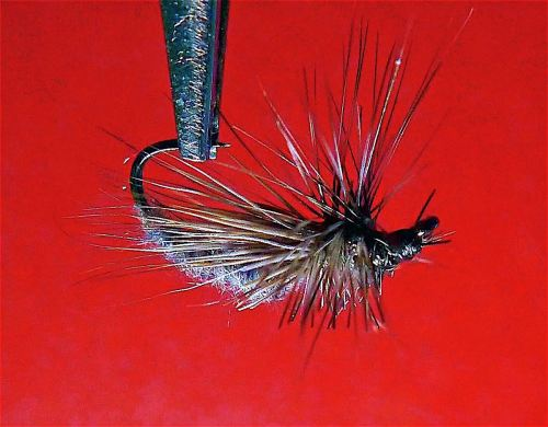 HC DANCING CADDIS GRAY1