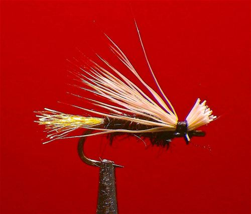 BLACK X CADDIS GLOSSOSOMA