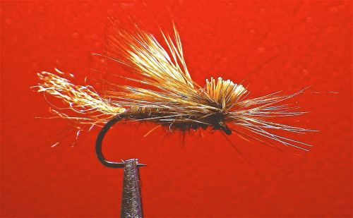 DARK E-C CADDIS