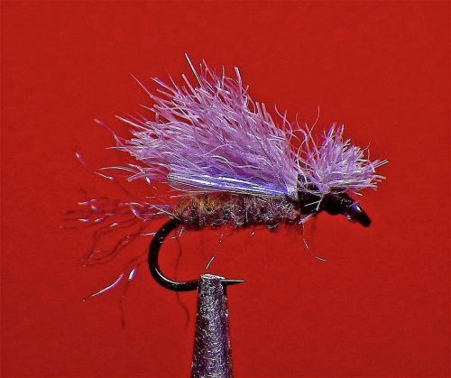 SNOW & ICE WING X CADDIS GRAY