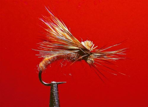 UP-WINGED CINNAMON CADDIS EMERGER