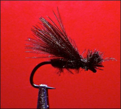 UV2 CDC BLACK CADDIS