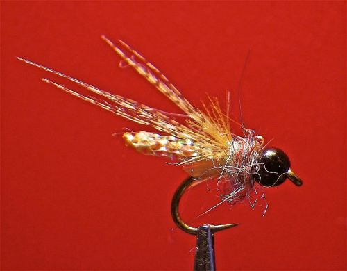 X3 CADDIS PUPA TAN - 1