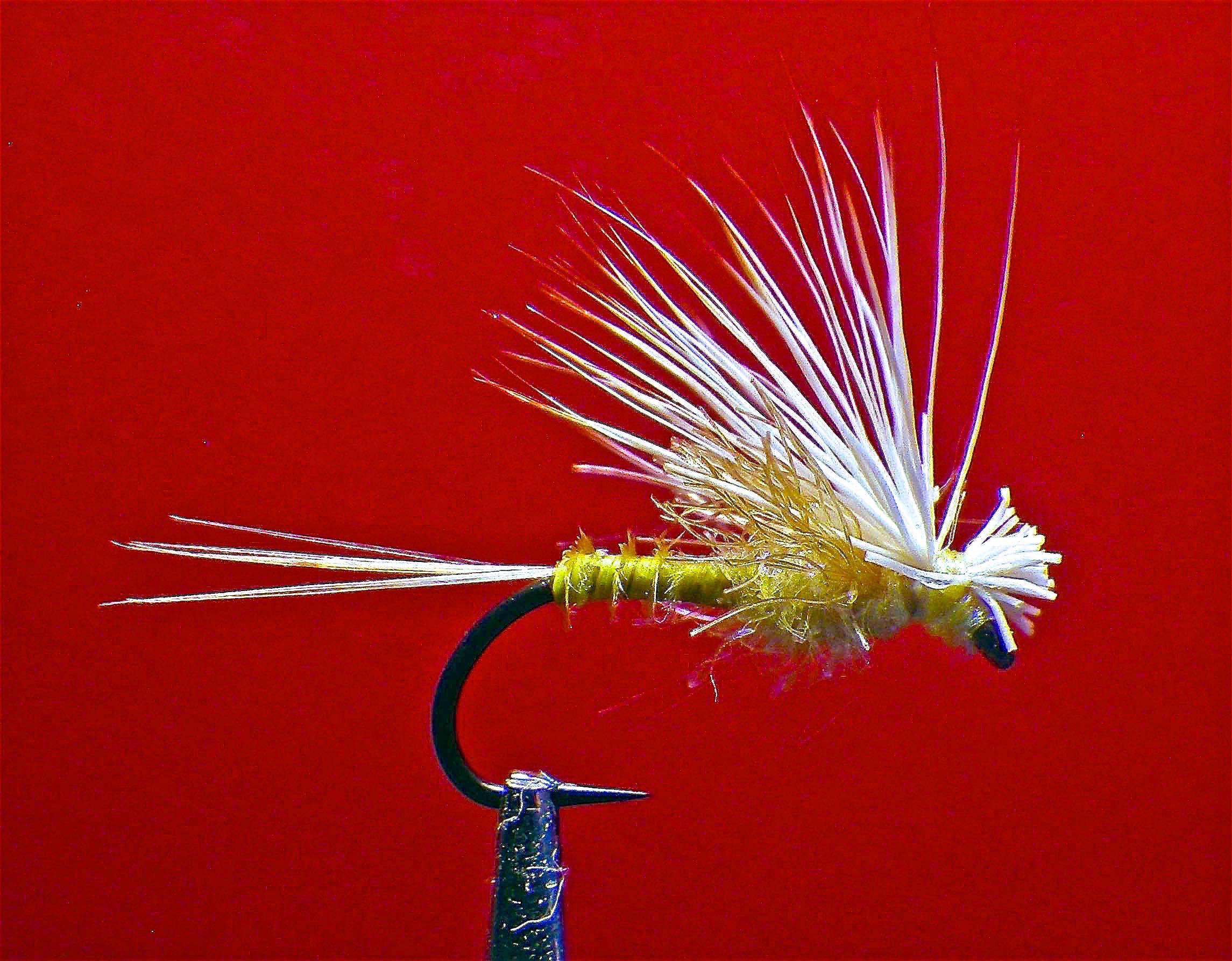 Barr de Flashback pâle matin dun Nymphe PMD Fly 16 18 ou 20 Umpqua