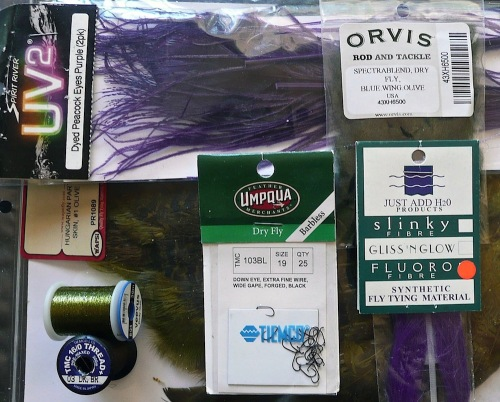 mat-purple-svelte-baetis