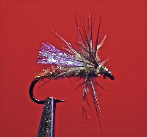 purple-baetis-diver-1