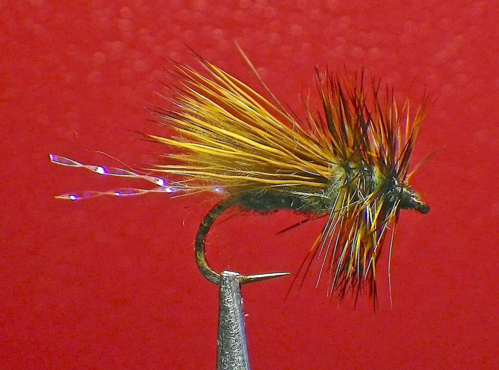 olive-uv-bubble-shuck-caddis-1